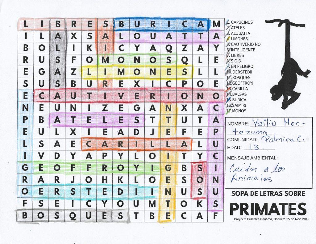Sopa de Letras, Proyecto Primates Panama